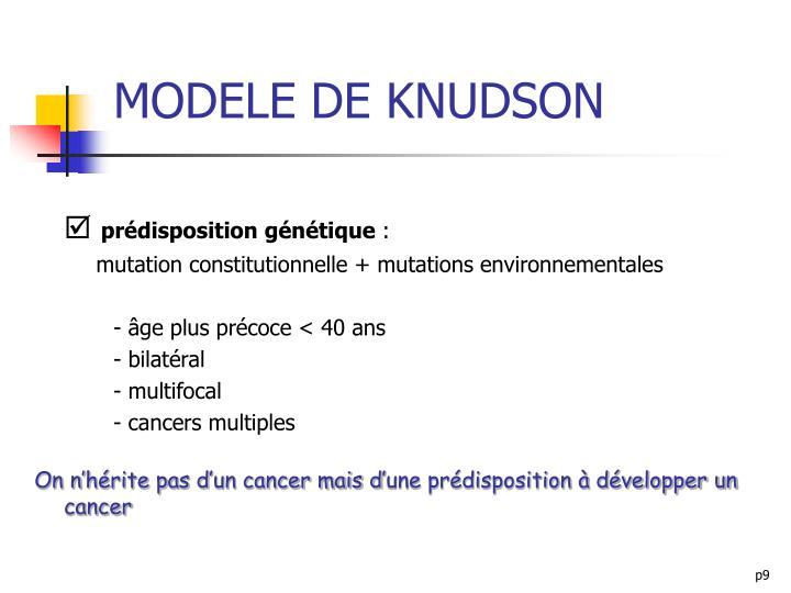 MODELE DE KNUDSON