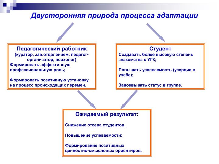 Двусторонняя природа процесса адаптации