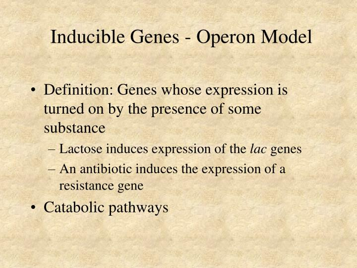 Inducible genes operon model