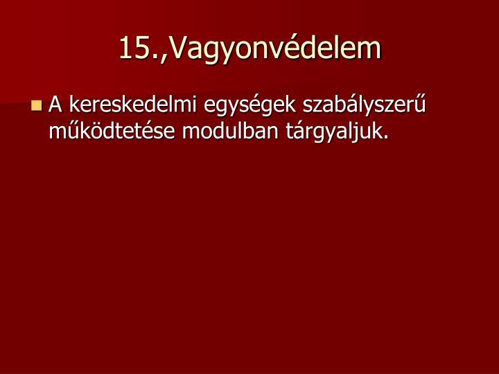 15.,Vagyonvédelem