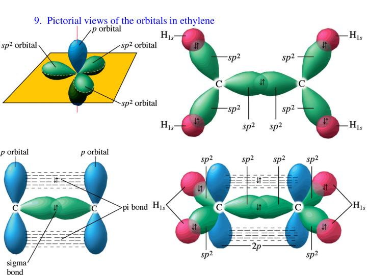 9.  Pictorial views of the orbitals in ethylene