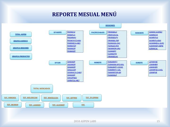 REPORTE MESUAL MENÚ