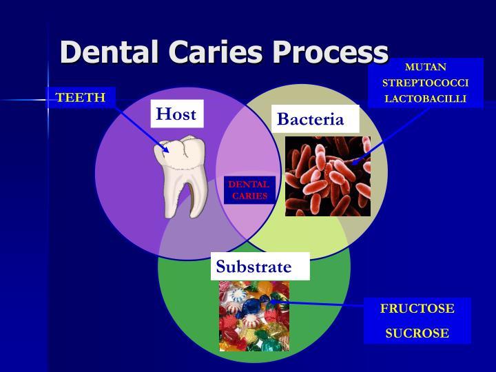 Dental Caries Process