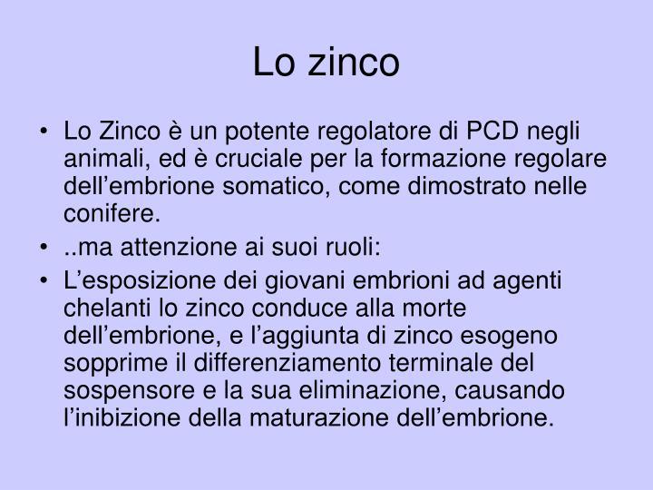 Lo zinco