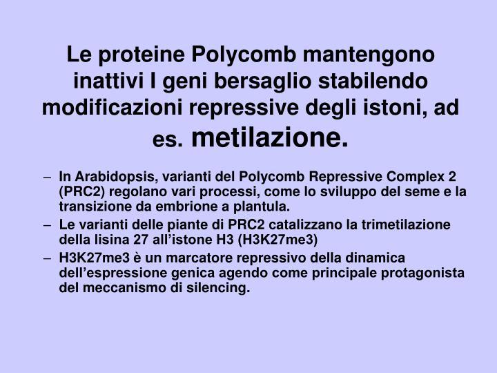 Le proteine Polycomb mantengono inattivi I geni bersaglio stabilendo modificazioni repressive degli istoni, ad es.