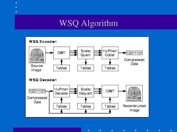 WSQ Algorithm