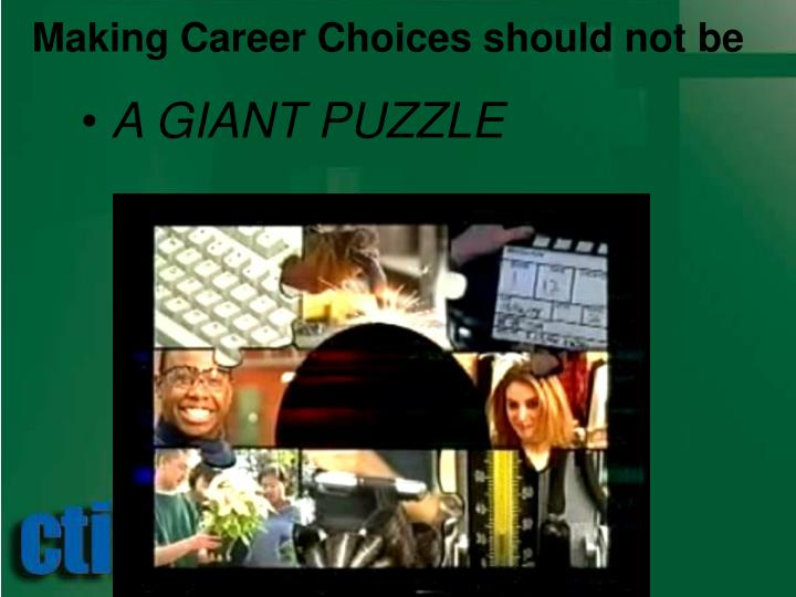 Making Career Choices should not be