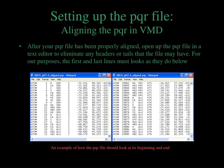 Setting up the pqr file: