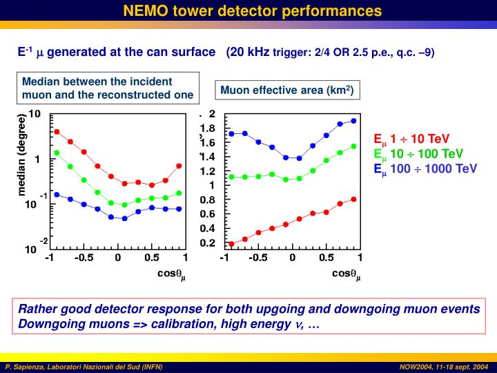 NEMO tower detector performances