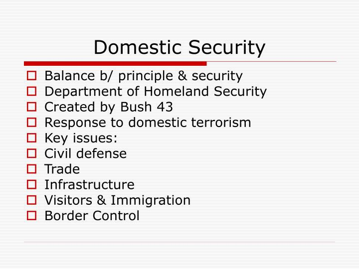 Domestic Security
