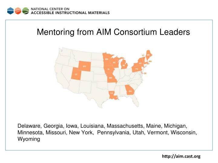Mentoring from AIM Consortium Leaders