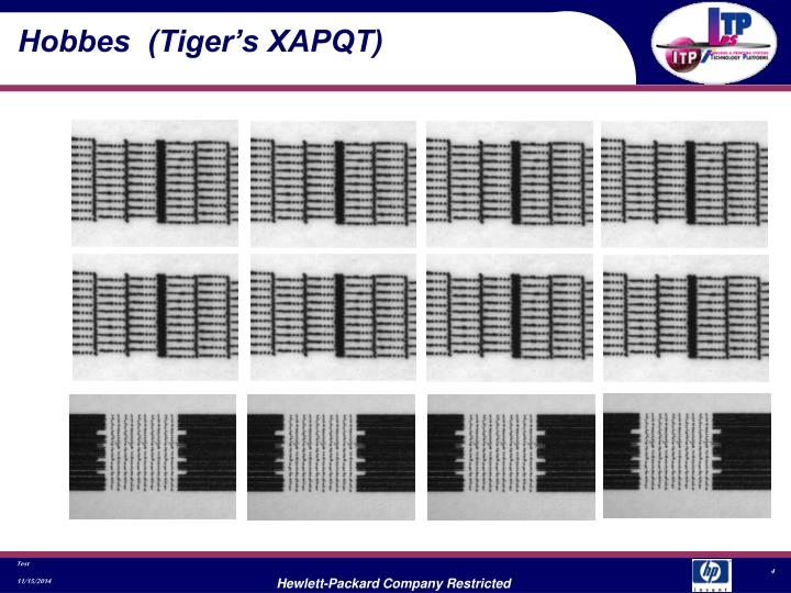 Hobbes  (Tiger's XAPQT)