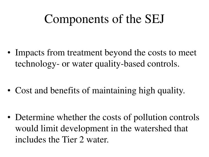 Components of the SEJ