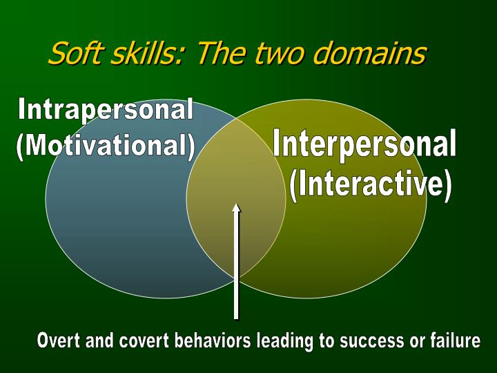 Soft skills: The two domains