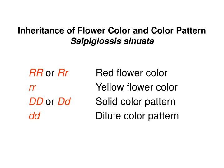 Inheritance of Flower Color and Color Pattern