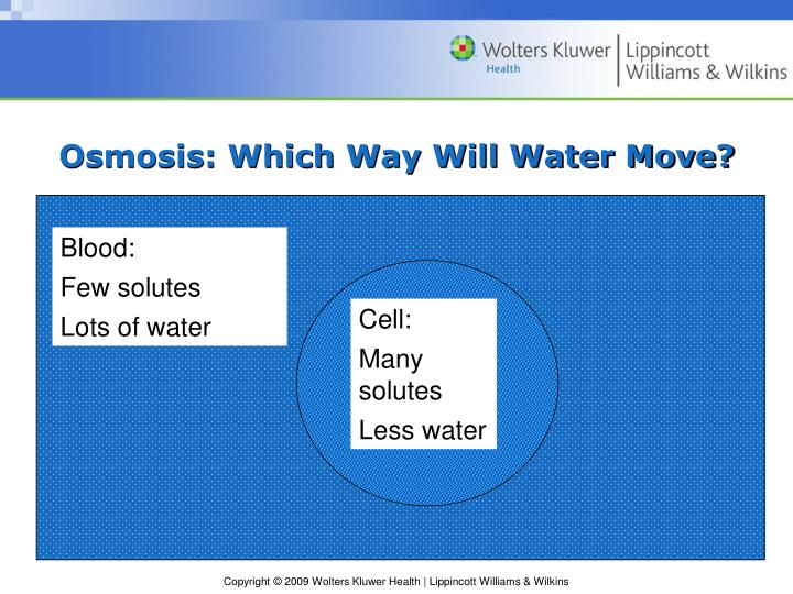 Osmosis which way will water move