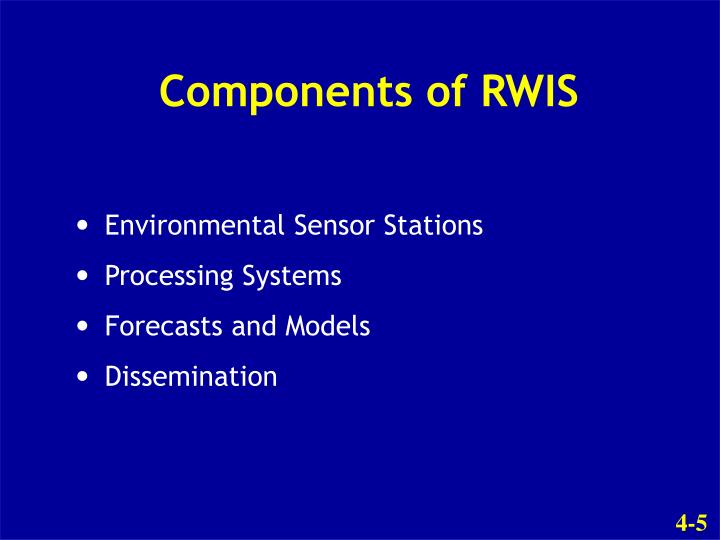 Components of RWIS