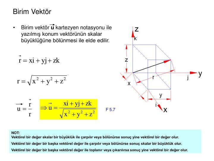 Birim vektör