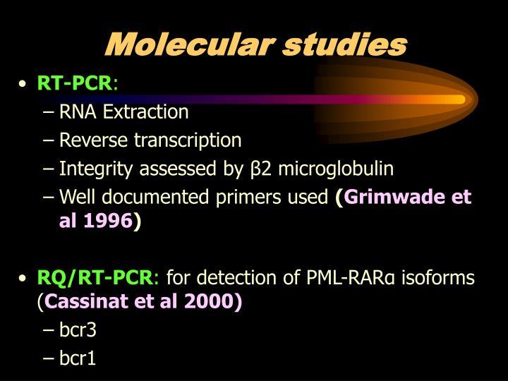 Molecular studies