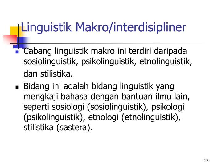 Linguistik Makro/interdisipliner