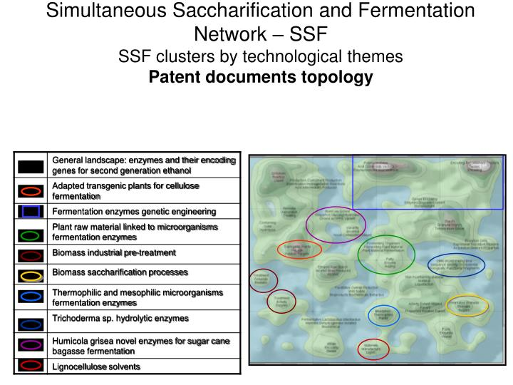 Simultaneous Saccharification and Fermentation Network – SSF