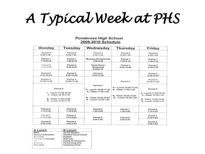 A Typical Week at PHS