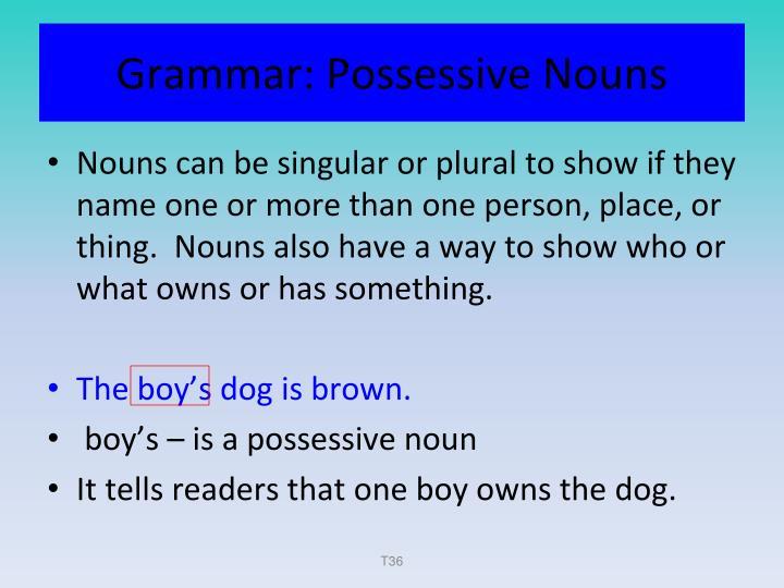 Grammar: Possessive Nouns