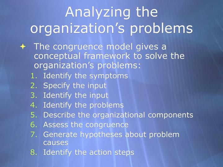 Analyzing the organization's problems