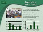 expert teams focus of teams