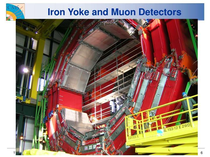 Iron Yoke and Muon Detectors