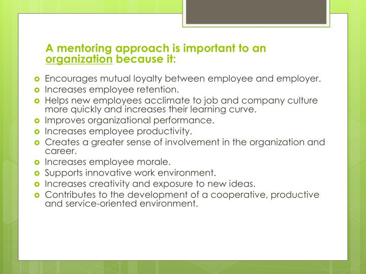 A mentoring approach is important to an