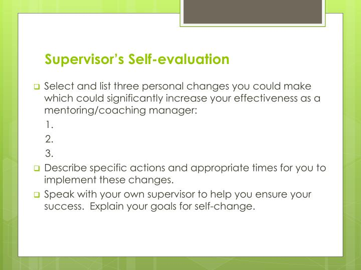 Supervisor's Self-evaluation