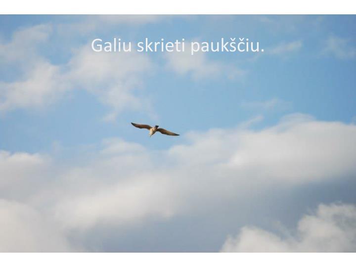 Galiu skrieti paukščiu.