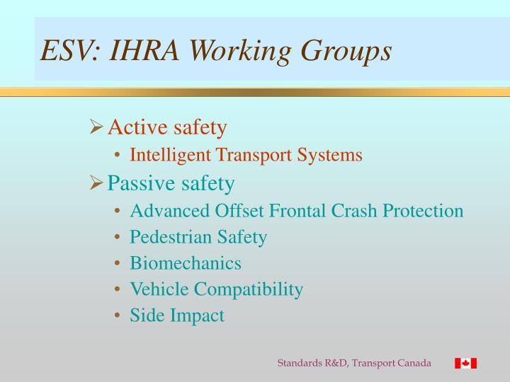 ESV: IHRA Working Groups