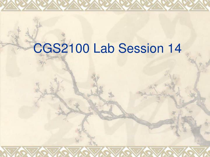 Cgs2100 lab session 14