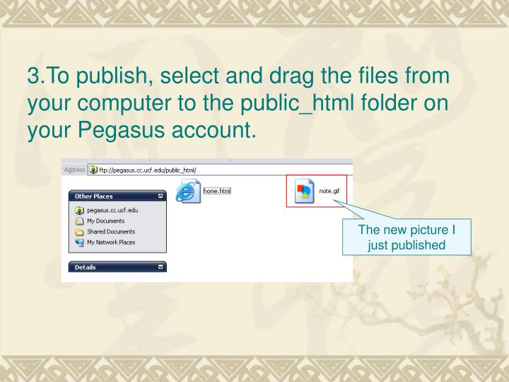 3.To publish, select and drag the files from your computer to the public_html folder on your Pegasus account.