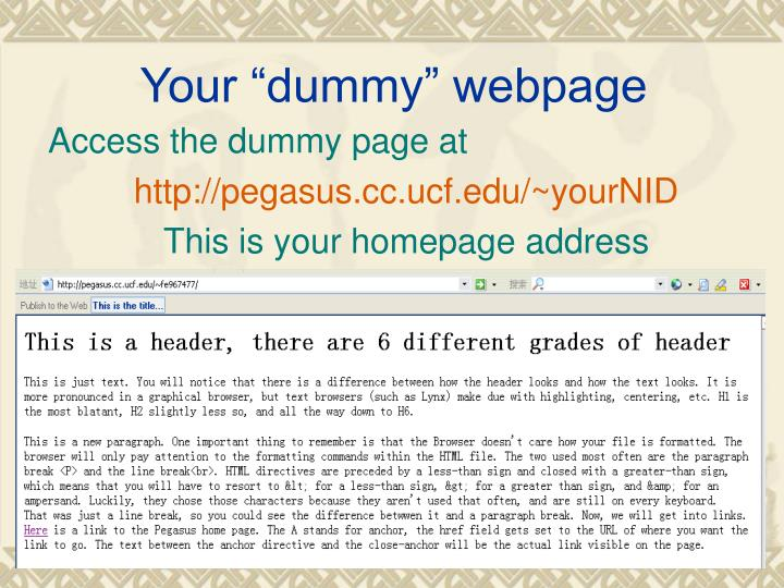 "Your ""dummy"" webpage"