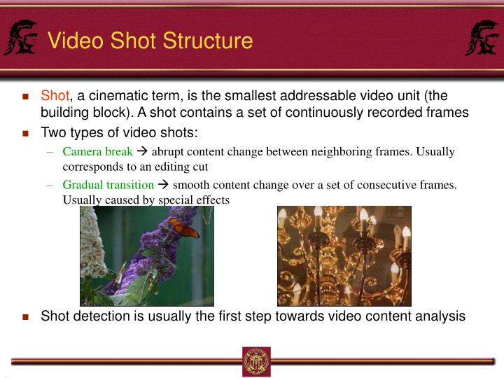Video Shot Structure