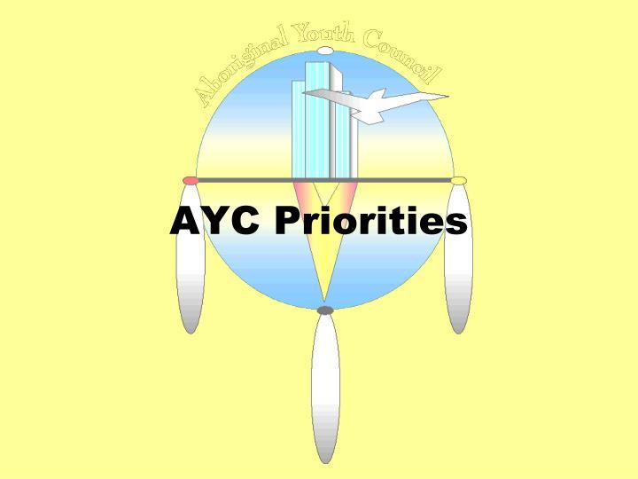 AYC Priorities