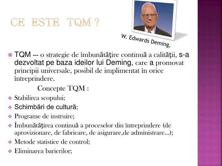 Ce  este  TQM ?
