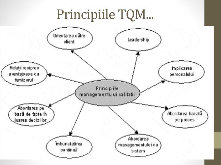 Principiile TQM...