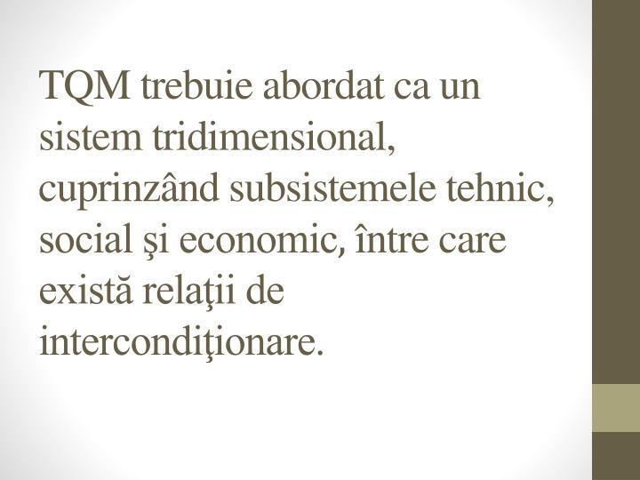 TQM trebuie abordat ca un sistem tridimensional, cuprinzând subsistemele tehnic, social şi economic