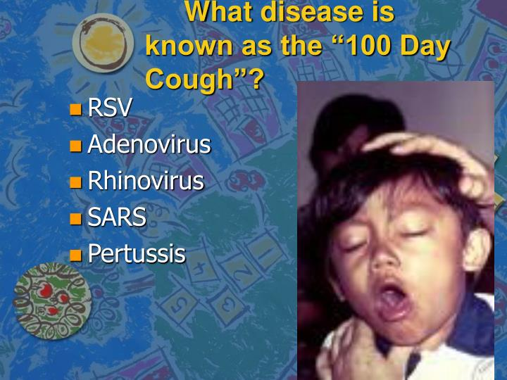 "What disease is known as the ""100 Day Cough""?"