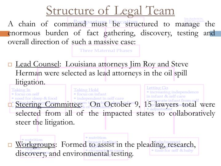 Structure of Legal Team