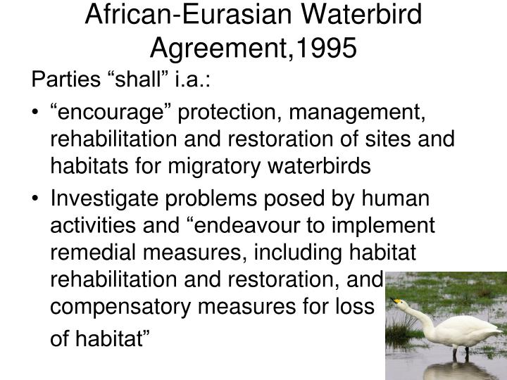 African-Eurasian Waterbird Agreement,1995