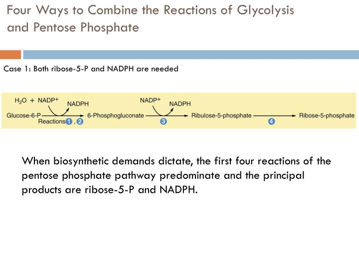 Four Ways to Combine the Reactions of Glycolysis and Pentose Phosphate