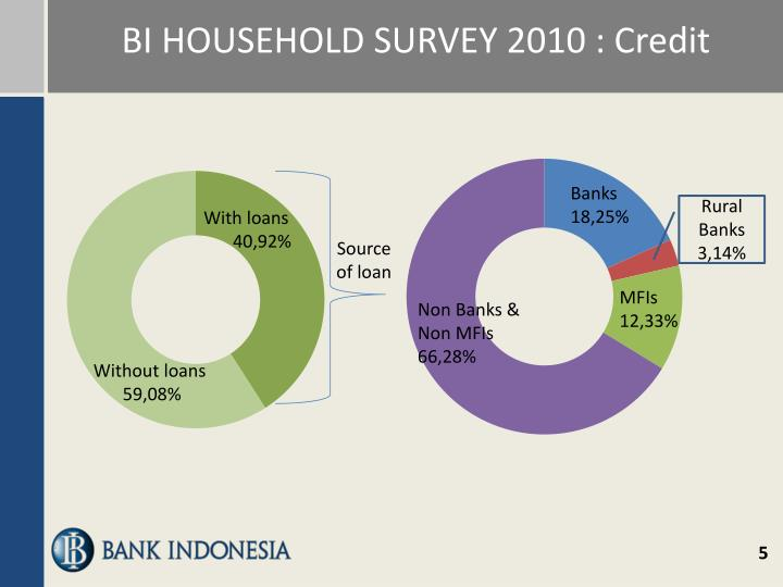 BI HOUSEHOLD SURVEY 2010 : Credit