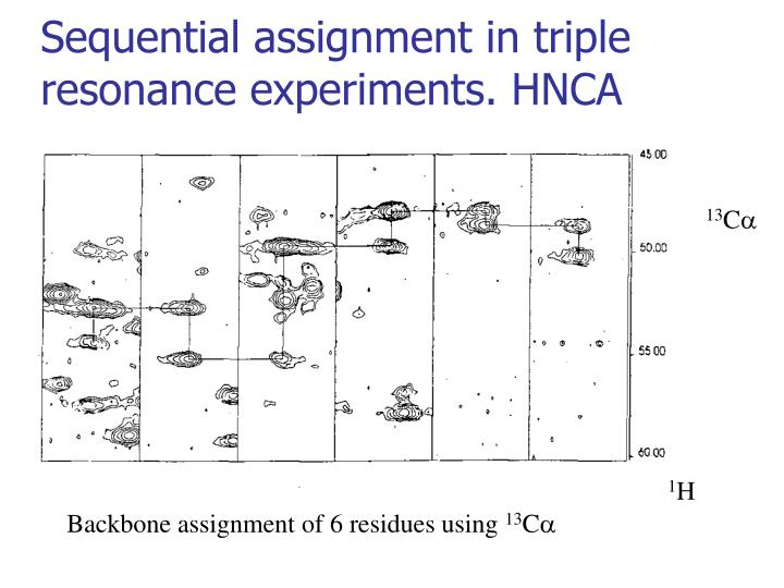 Sequential assignment in triple resonance experiments. HNCA