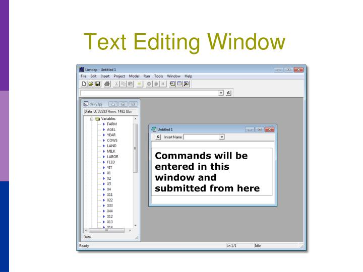 Text Editing Window