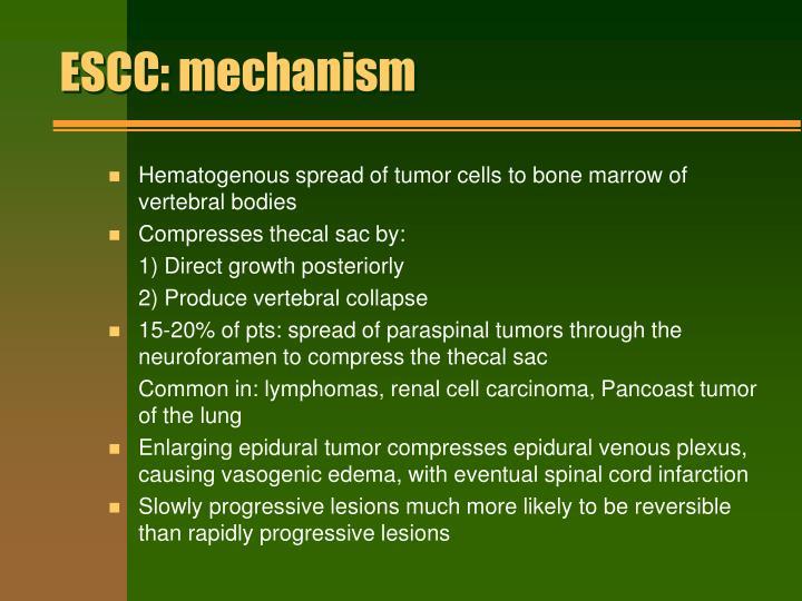 ESCC: mechanism